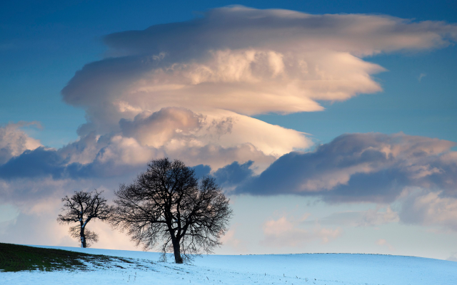 2048x1367 pix. Wallpaper snow, winter, field, landscape, tree, clouds, nature