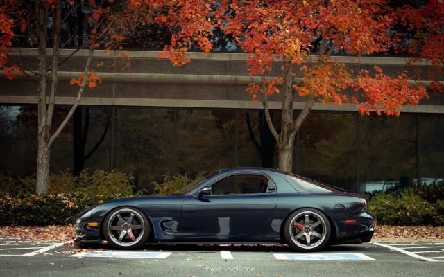 2560x1600 pix. Wallpaper car, fall, Mazda RX-7, Mazda, autumn, leaf, tree