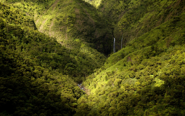1920x1200 pix. Wallpaper Kauai, Hawaii, waterfall, landscape, nature, mountains, forest, spring
