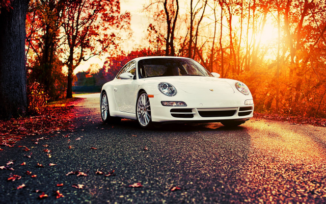 1920x1080 pix. Wallpaper Porsche 911, car, autumn, leaf, sunset, Porsche, nature