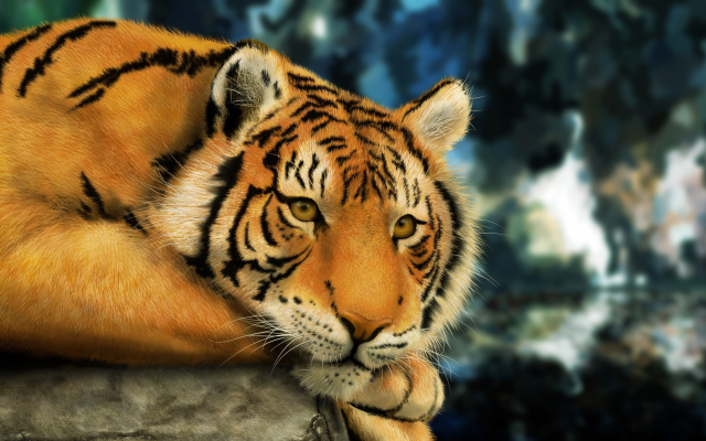 4800x2904 pix. Wallpaper animals, tigers