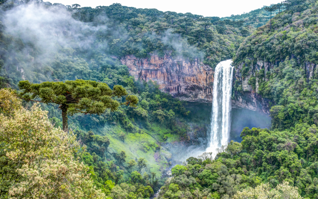 5476x3463 pix. Wallpaper cascata do caracol, caracol falls, waterfall, rio grande do sul, brazil, forest