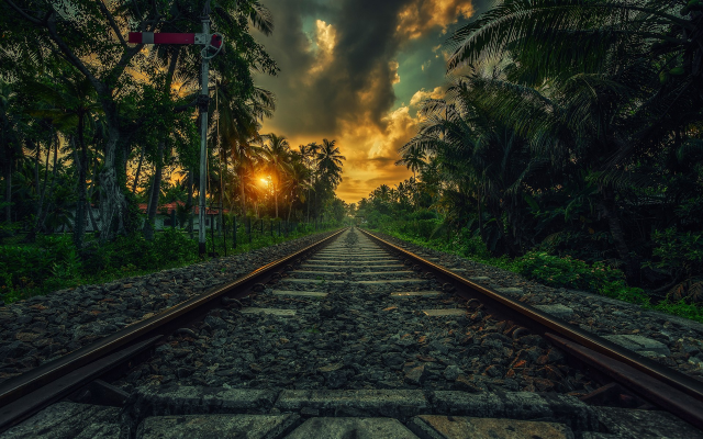 1920x1200 pix. Wallpaper nature, landscape, railway, sunset, palm trees, clouds, shrubs, Sri Lanka, tropical