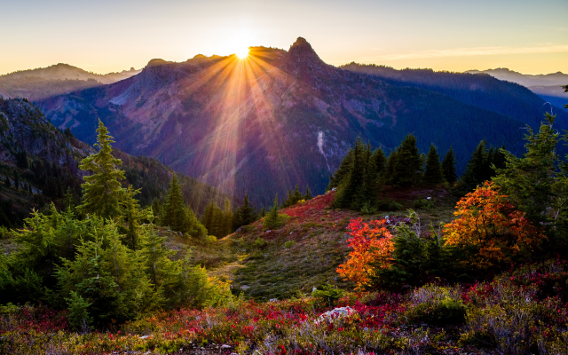 4071x2714 pix. Wallpaper usa, park, mountains, washington state park, fir-tree, bushes, light rays, sun, nature