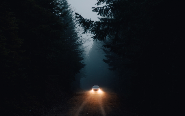 Wallpaper Road Forest Night Cars Nature