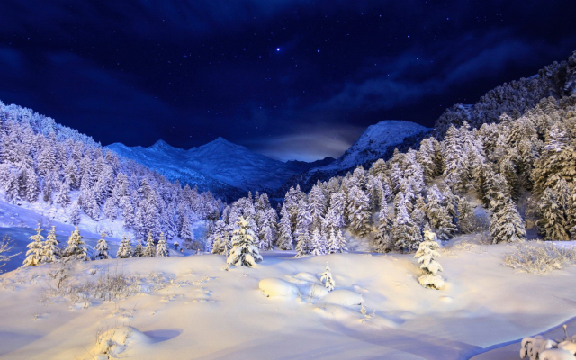1920x1080 pix. Wallpaper snow, mountains, winter, tree, sky, night, forest