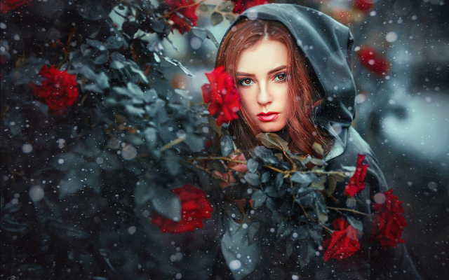 Wallpapers girl model snow rose women redhead hood - Rose in snow wallpaper ...