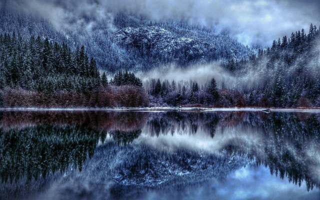 1920x1200 pix. Wallpaper tree, snow, fog, lake, reflection, nature