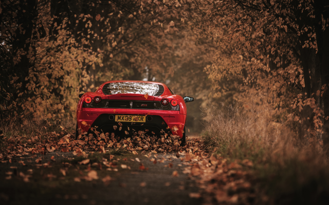 3000x2002 pix. Wallpaper ferrari 458 italia, cars, autumn, ferrari, leaf