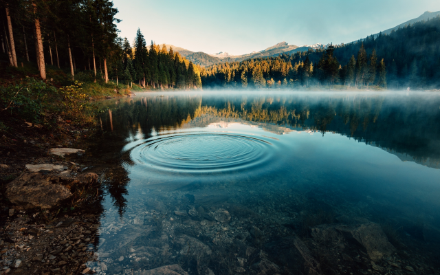 2560x1707 pix. Wallpaper caumasee, switzerland, forest, nature, lake, morning, fog