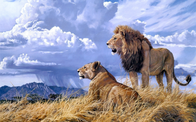 2380x1542 pix. Wallpaper lioness, lion, animals, art, clouds