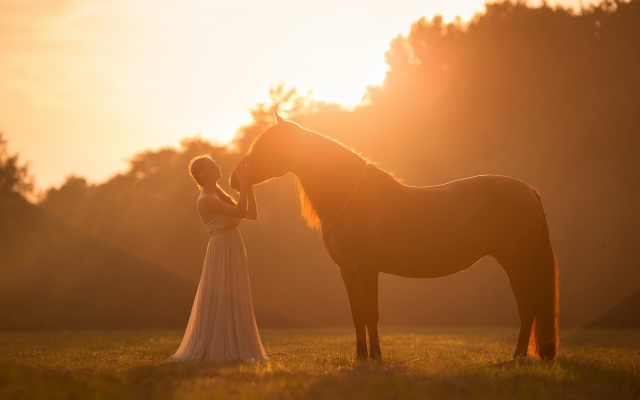 2047x1301 pix. Wallpaper women, model, horse, animals, outdoors, sunlight, dress