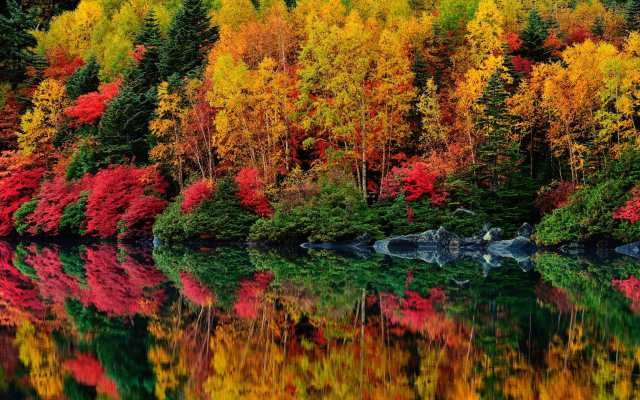 1920x1281 pix. Wallpaper lake, forest, autumn, trees, reflection