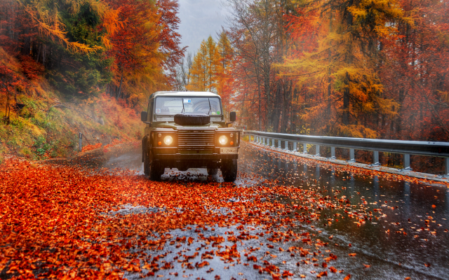 2000x1335 pix. Wallpaper autumn, nature, road, tree, leaves, fog, leaf, cars,
