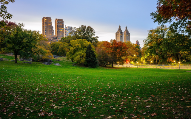 3840x2160 pix. Wallpaper central park, manhattan, new york, city, nature, park, trees, grass, leaves, leaf fall