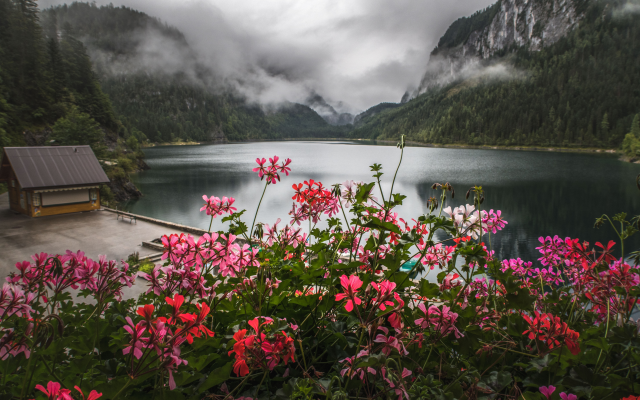 5472x3648 pix. Wallpaper nature, landscape, mountains, lake, forest, flowers, geranium