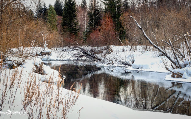 2000x1122 pix. Wallpaper snow, forest, reflection, river, askhyz, khakassia, russia, winter