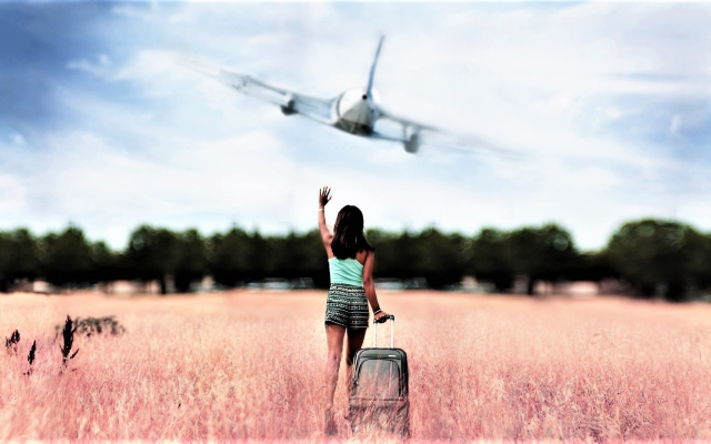 1920x1080 pix. Wallpaper girl, women, aircraft, bag, plane, brunette, field