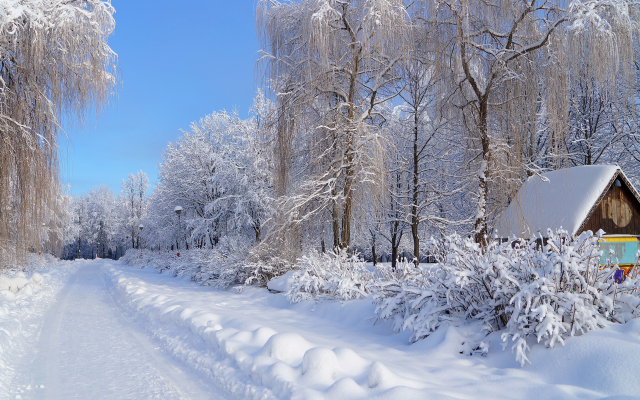 4912x3264 pix. Wallpaper nature, winter, road, house, trees, birches, snow, russia