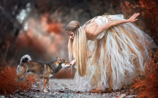 2732x1822 pix. Wallpaper dog, women outdoors, animals, dress