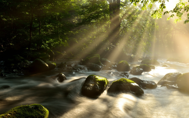 2227x1486 pix. Wallpaper nature, summer, forest, river, stream, stones, sun rays