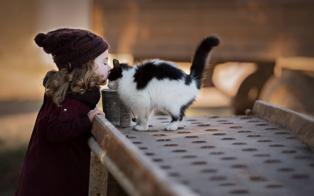 2048x1367 pix. Wallpaper child, girl, curls, hat, scarf, coat, animals, kitten, kiss, cat