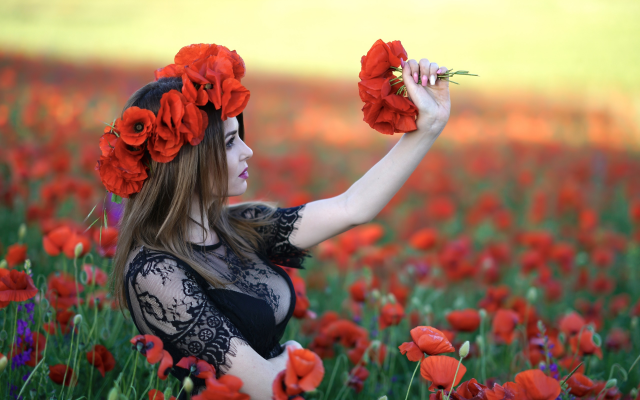 2560x1708 pix. Wallpaper flowers, women, outdoors, red flowers, cleavage, see-through clothing, sideboob, busty, poppies, poppy
