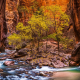 landscape, nature, Zion National Park, river, canyon, Utah, trees, erosion, red wallpaper