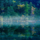 mist, nature, landscape, lake, reflection, forest, water, morning, Japan, tree wallpaper