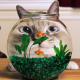 cat, aquarium, goldfish, distortion, fish, animals wallpaper