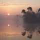 fog, lake, calm, reflections, water, sunrise, nature, landscape wallpaper