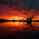 sunset, horizon, nature, tree, dead tree, clouds, water, silhouette, reflections wallpaper