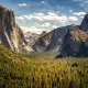 Yellowstone National Park, california, usa, mountains, valley, forest, tree wallpaper