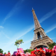 Eiffel Tower, architecture, flowers, Paris, France wallpaper