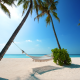 hammock, beach, maldives, nature, sand, palm tree, tropics, ocean wallpaper