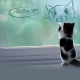 animals, cat, baby animals, kittens, jars, window, digital art wallpaper