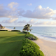 el camaleon, golf course, mayakoba, sea, mexico, palm tree, sand, grass, beach, nature, tropical wallpaper
