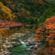 train, nature, landscape, trees, forest, branch, leaves, colorful, fall, rock, stones, river, stream wallpaper