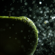 apple, macro, water drops, fruit, food wallpaper