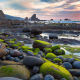 beach, stones, nature, algae, sunset wallpaper