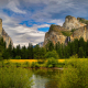 yosemite national park, usa, forest, river, mountains, nature wallpaper