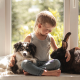 boy, rabbit, dog, friends, friendship, window, kid, animals wallpaper