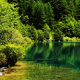 china, jiuzhaigou national park, park, lake, tree, nature wallpaper