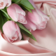 silk, pink, bouquet, tulips, flowers wallpaper