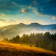 autumn, ukraine, carpathian mountains, nature, fog, clouds wallpaper