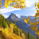 mountains, yellow foliage, autumn, forest, nature wallpaper