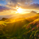 rhododendron, flowers, nature, mountains, sunset, clouds wallpaper