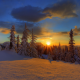 forest, sunset, winter, clouds, snow, beauty, sky, nature wallpaper
