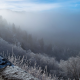 winter, frost, slope, fog, forest, tree, nature, fog, mountains wallpaper