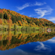 reflection, germany, tree, leave, lake, sky, bavaria, autumn, forest wallpaper